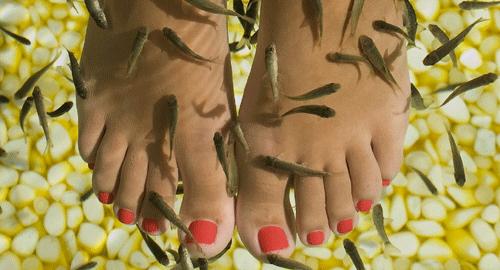 fisk spa göteborg massage i malmö